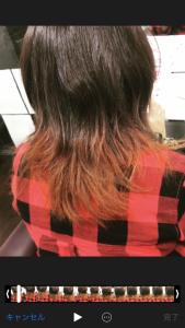 紅葉カラー